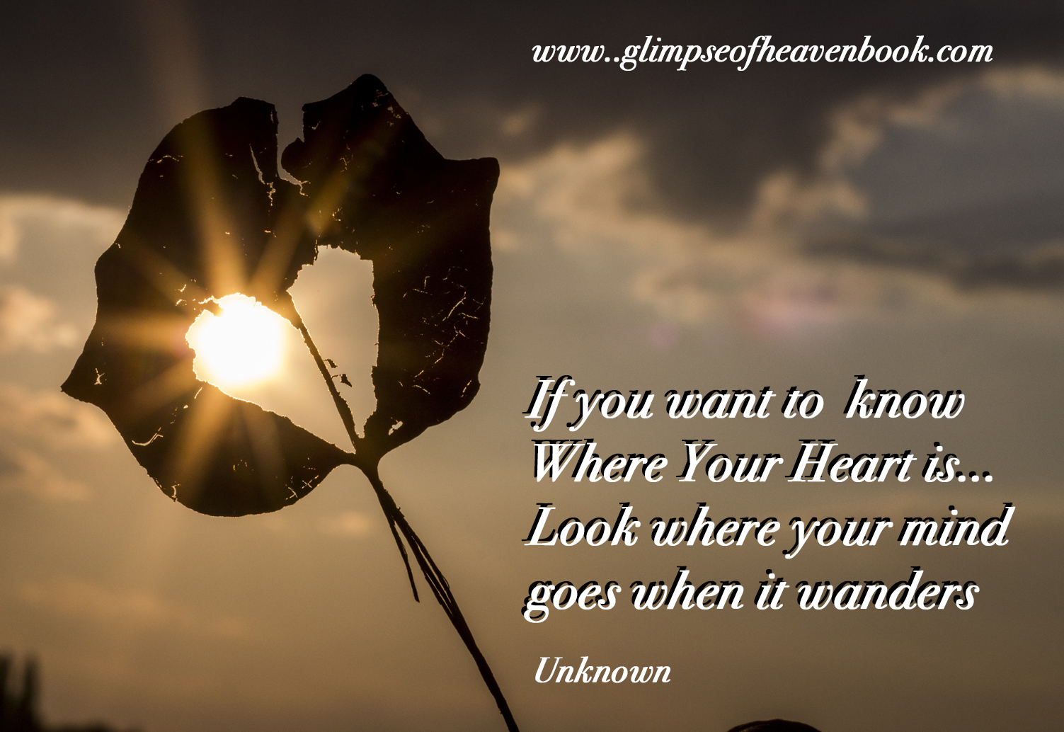 If You Want To Know Where Your Heart Us Sun 622740 A Glimpse Of